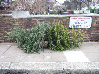 Christmas Tree Disposal in London