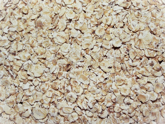 Food Waste Oatmeal