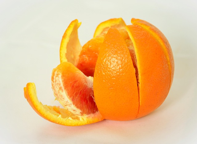 Food Waste Orange