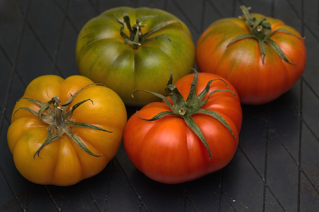 Food Waste Tomatoes