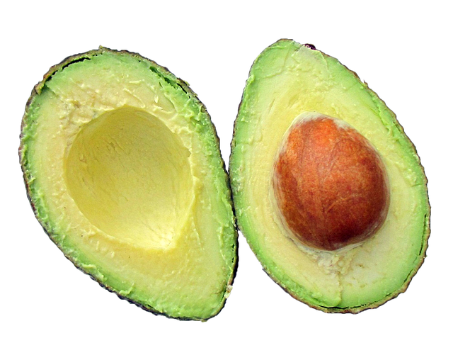 Food Waste Avocado Seed